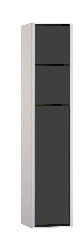 Emco asis WC-Modul Aufputz 975127550 aluminium/schwarz